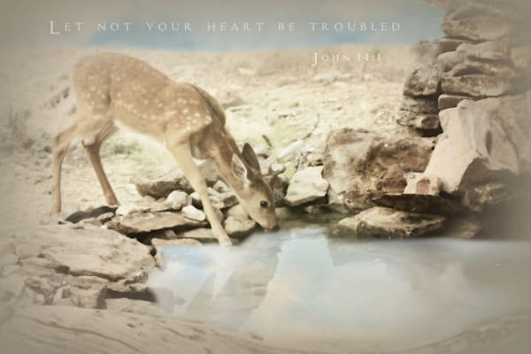 Fawn Inspirational Sparkly Art