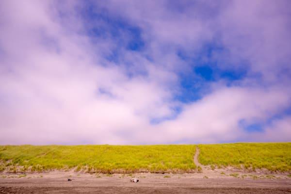Grassy Dune, Fort Stevens State Park, Oregon, 2021