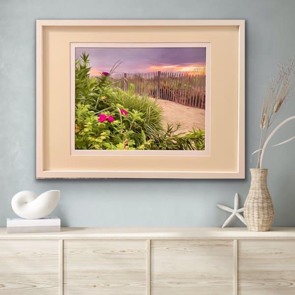 #2 Beach Roses  | Silver Sun Photography