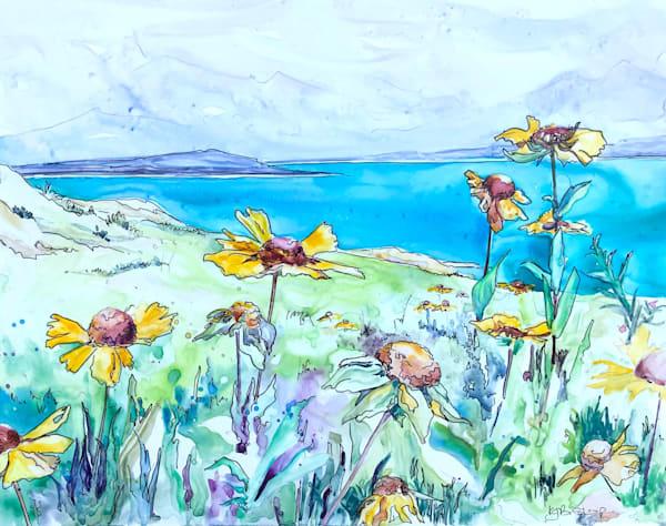 Wildflowers at Abraham Lake