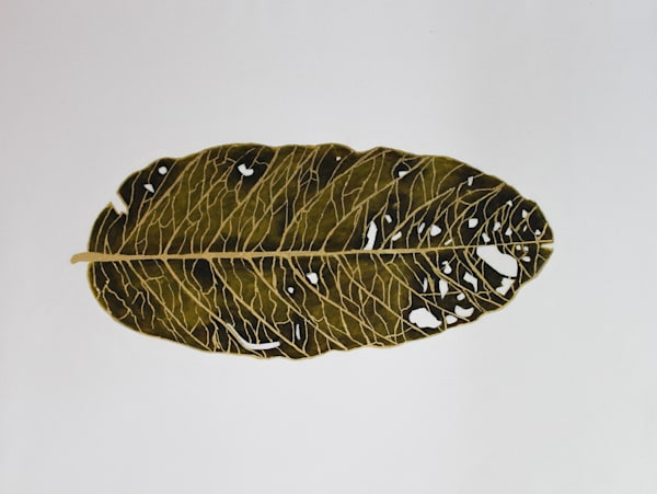 Fallen Leaf Art | Brad Marr