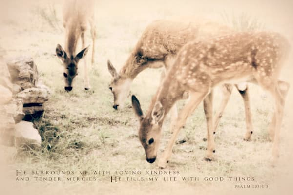 SPARKLY FAWN TRIPLETS ART