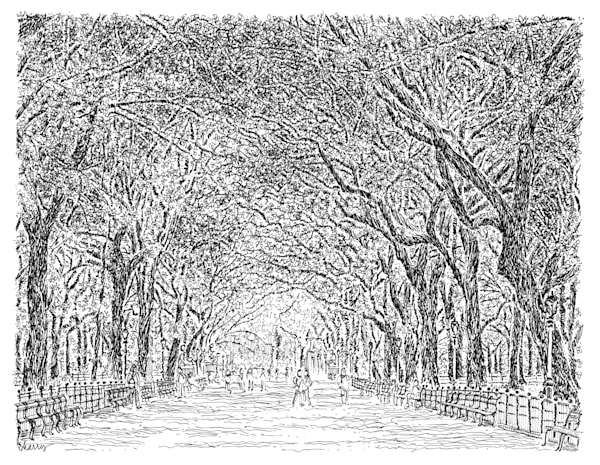 the mall, central park, new york city:  fine art prints in elegant pen available for purchase online