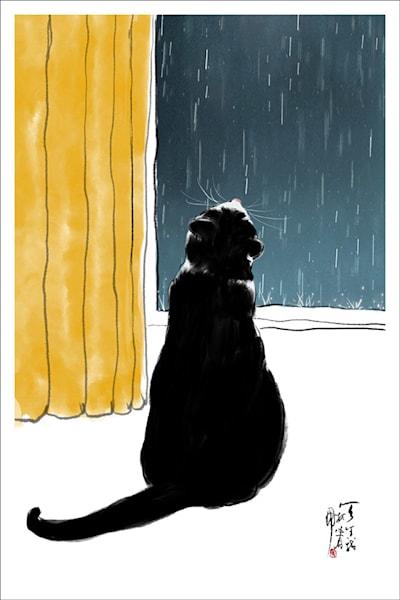 Cat And Rain Photography Art | Cheng Yan Studio