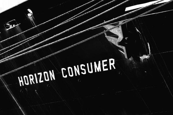 Horizon Consumer 7 bw