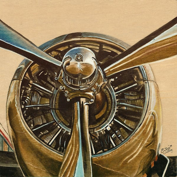 """""""DC3 Front"""" fine art  print by Emily Willey."""