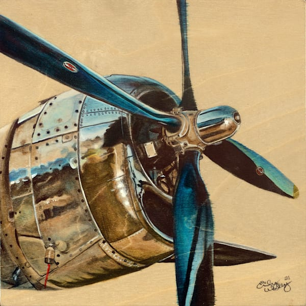 """""""DC3 Side"""" fine art print by Emily Willey."""