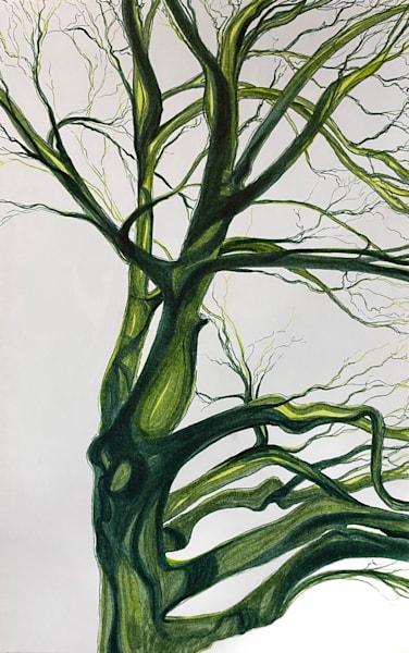 Green Tree Art | Artist Rachel Goldsmith, LLC