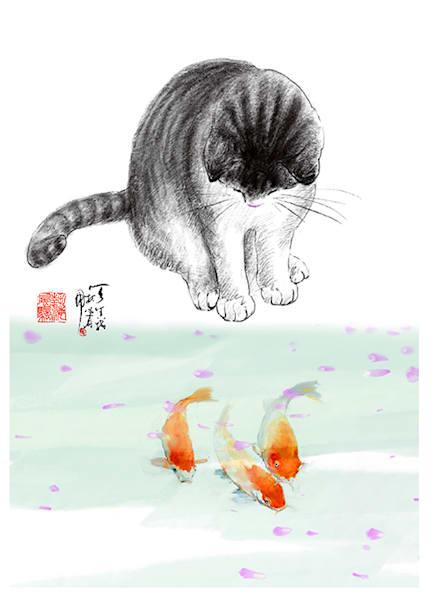 Fish Watching Cat Photography Art | Cheng Yan Studio