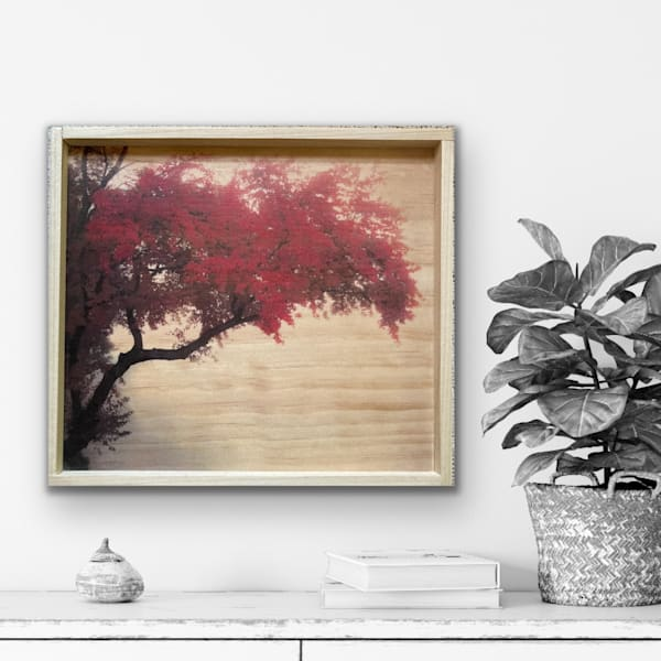 Misty Maple Wood Creation | Silver Sun Photography