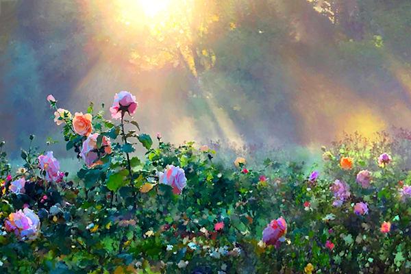 Rose In The Morning Mist Photography Art | Cheng Yan Studio