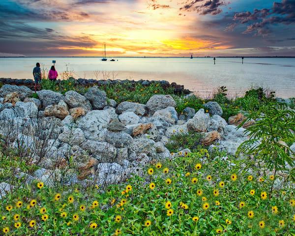 Beach Flowers Photography Art | It's Your World - Enjoy!