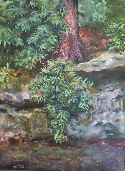 New Rocks & Rhodies Art | JoemcInroy