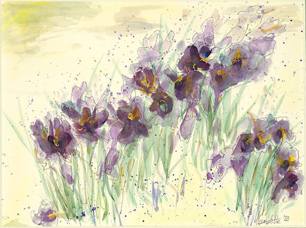 """""""MOMA Irises"""" fine art print by Stacey Melotte."""