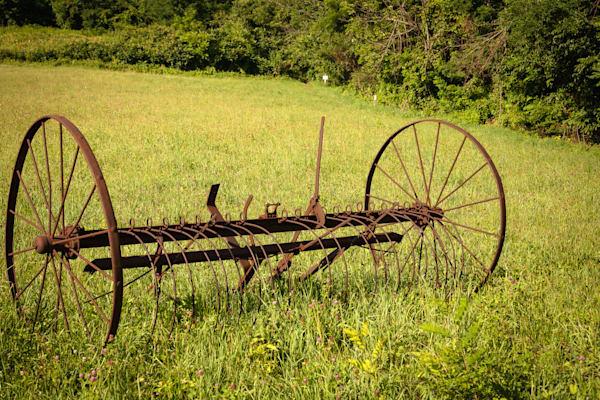 Wannabe Naturalist Appalachian Trail   Eugene L Brill