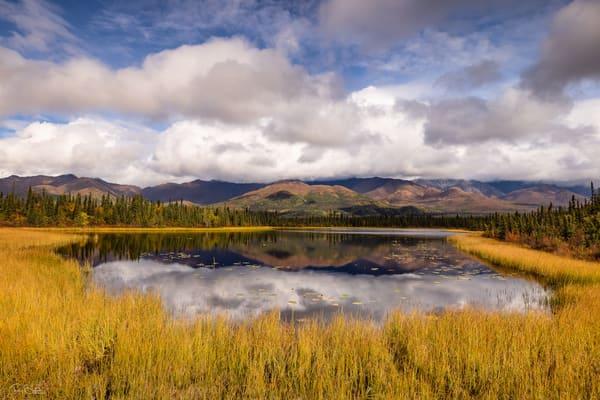Kettle pond in Wrangell-St. Elias National Park.