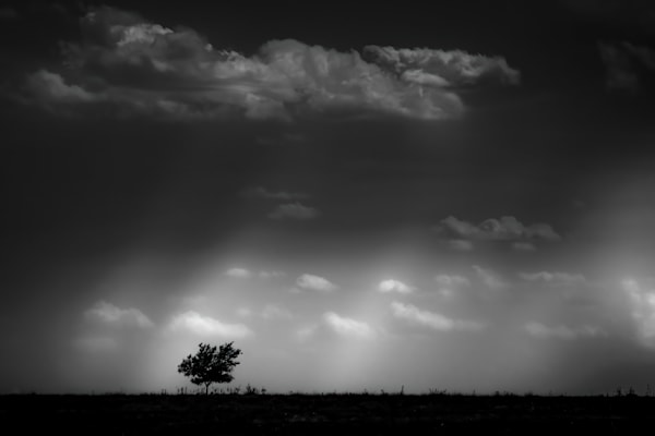 It Happened In Ks. Photography Art | Rinenbach Photography
