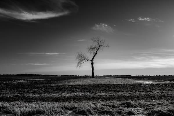 Goin' It Alone Photography Art | Rinenbach Photography