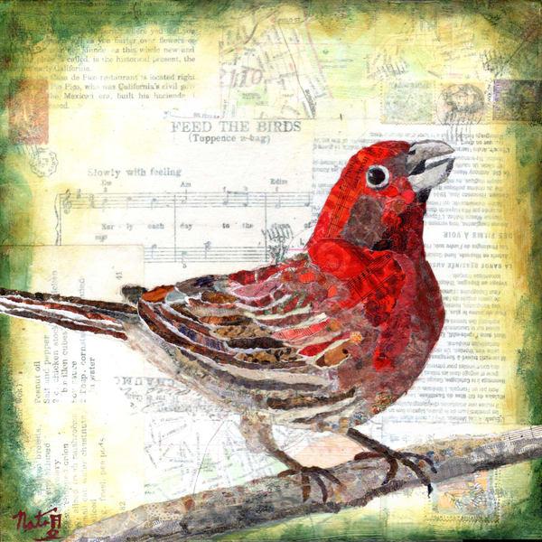 Backyard Birds: Mr. Housefinch Art   Poppyfish Studio