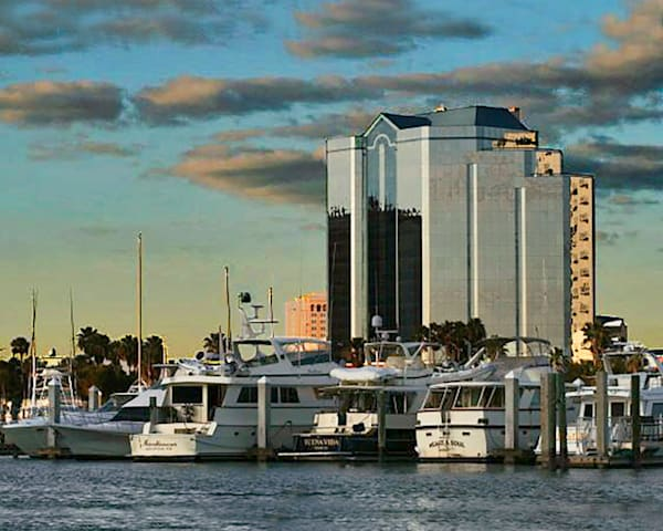 One Sarasota Tower from water