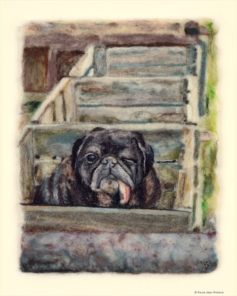 """Oscar The Pug"" fine art print by Paula Jean Roberts."