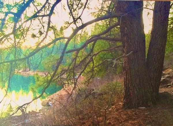 Meadow Camp Morning Art | Scott Dyer Fine Art