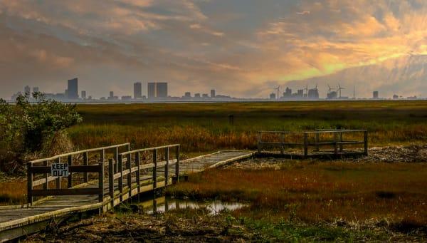 Atlantic City Nature Preserve