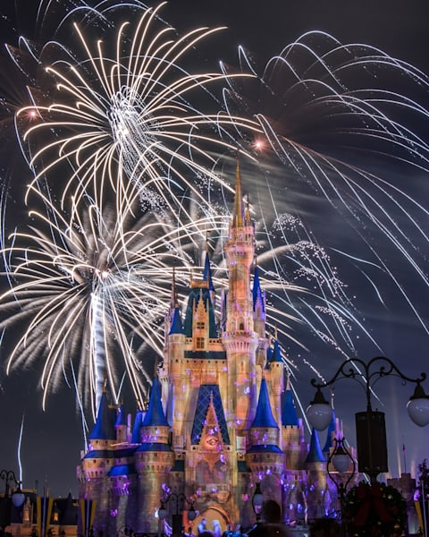 Happily Ever After Eugene And Rapunzel Photography Art   William Drew Photography