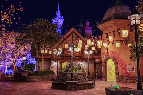 Tangled Magic Kingdom - Disney Pics | William Drew