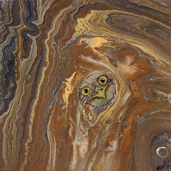 Owl In Tree Hollow 475 Art   lisaabbott.art