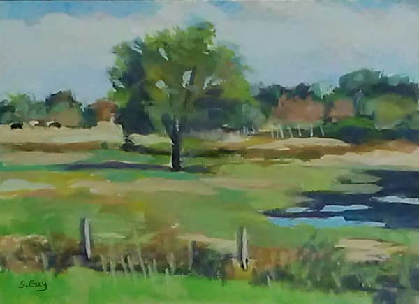 Sunlit Pasture Art | Sharon Guy