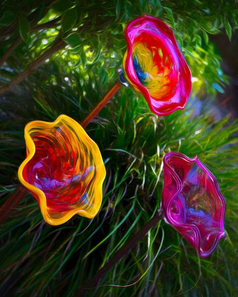 Glass Flowers Impressions