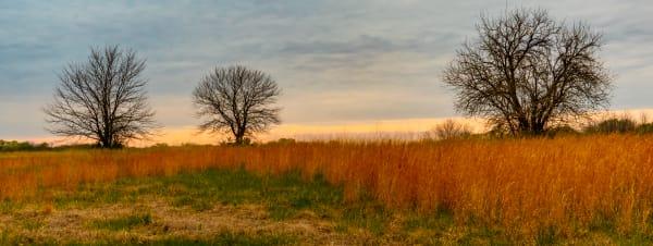 April In Kansas Photography Art   Silver Spirit Photography