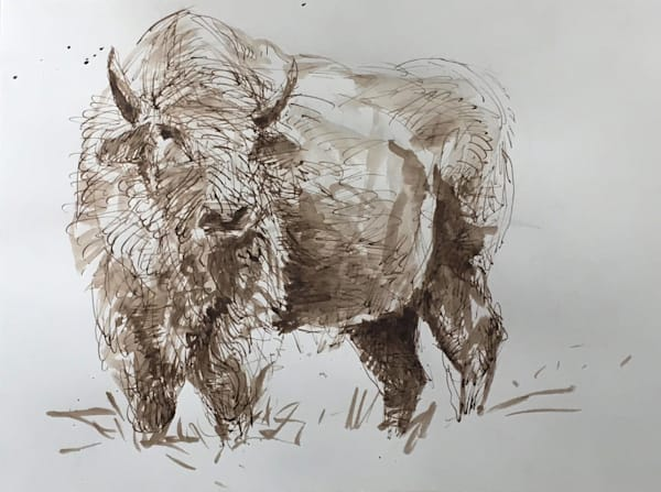 American Buffalo27 Art   michaelwilson