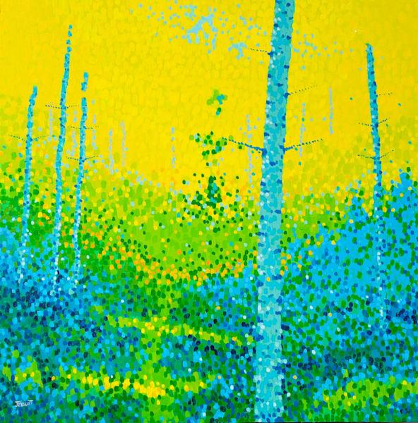 Alone With The Trees | Jim Pescott Art