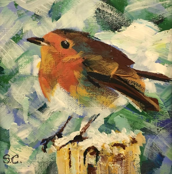 Robin  Art   susanclare