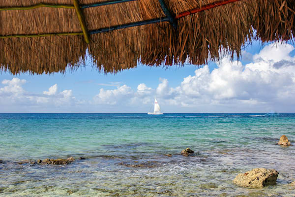 Holiday In The Sun Photography Art | Happy Hogtor Photography