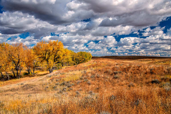 Autumn in the South Platte Valley - Colorado fine-art photography prints