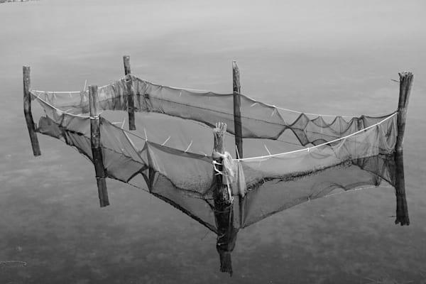Les Salines 7: Nets Art | Norlynne Coar Fine Art