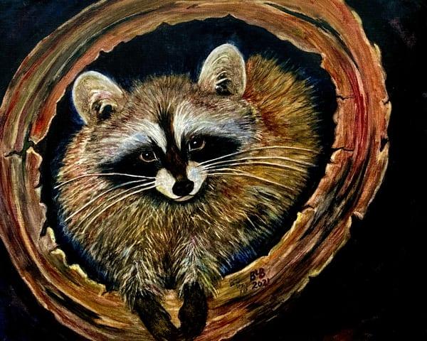 Raccoon Friend Art   Blissful Bonita Art Studio & Gallery