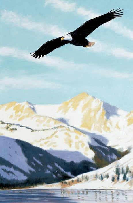 Twin-Lakes-Bald-Eagle-exbhrm