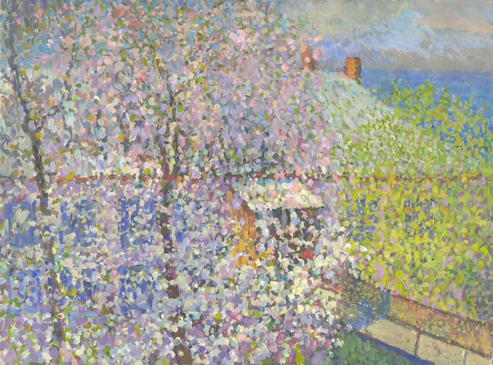 Reshchuk-Cherry-Blossoms