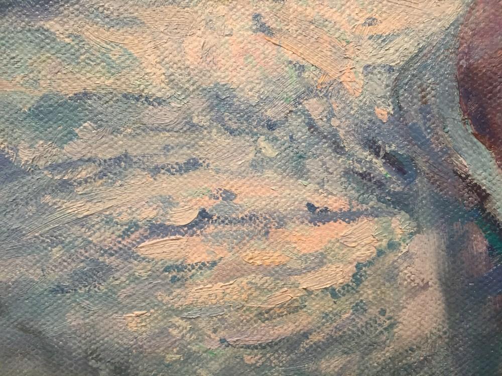 swan02-bdg34r