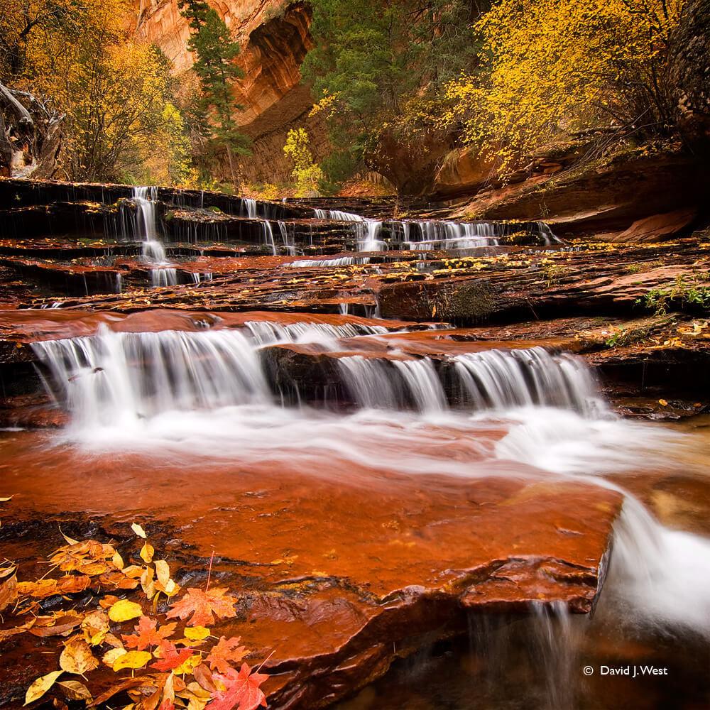 Autumn-cascades-square-twbfdf