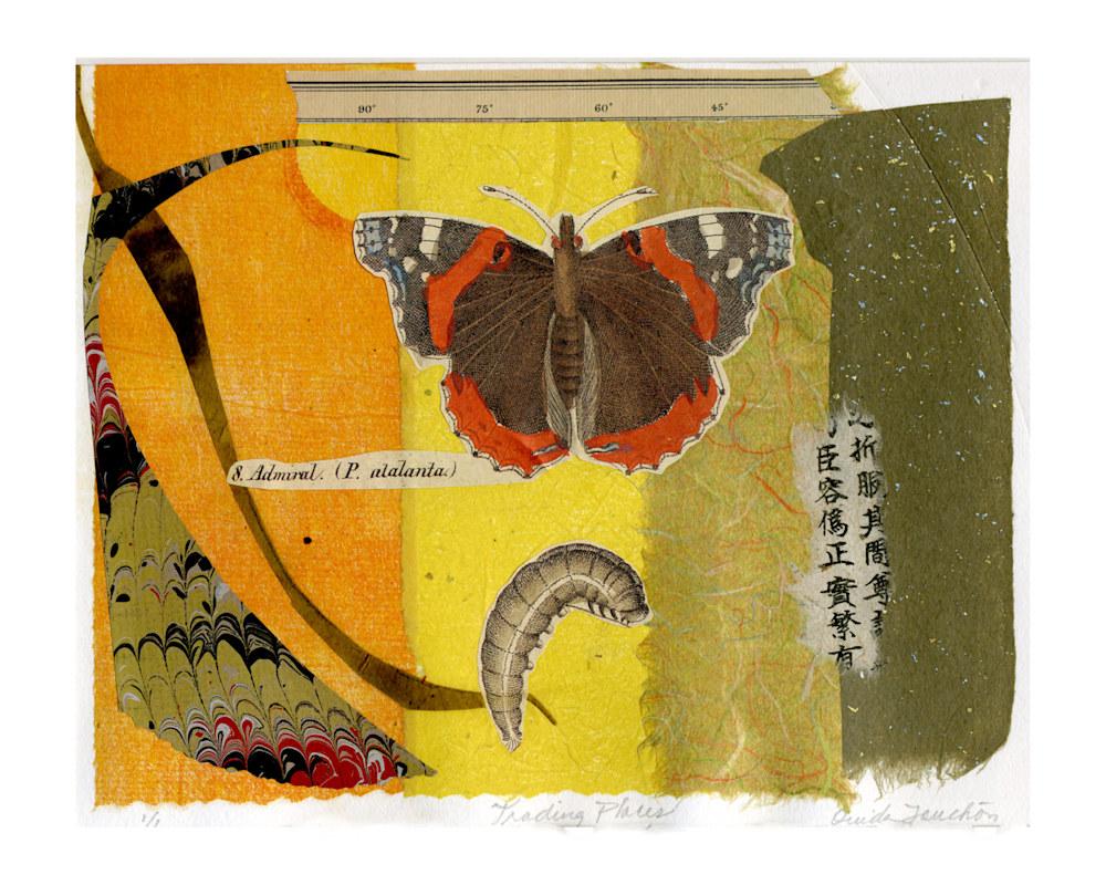 butterflies-and-bugs003-pyjz4m
