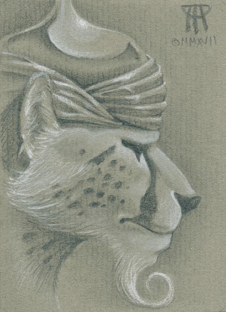 cat-warrior-i6at43