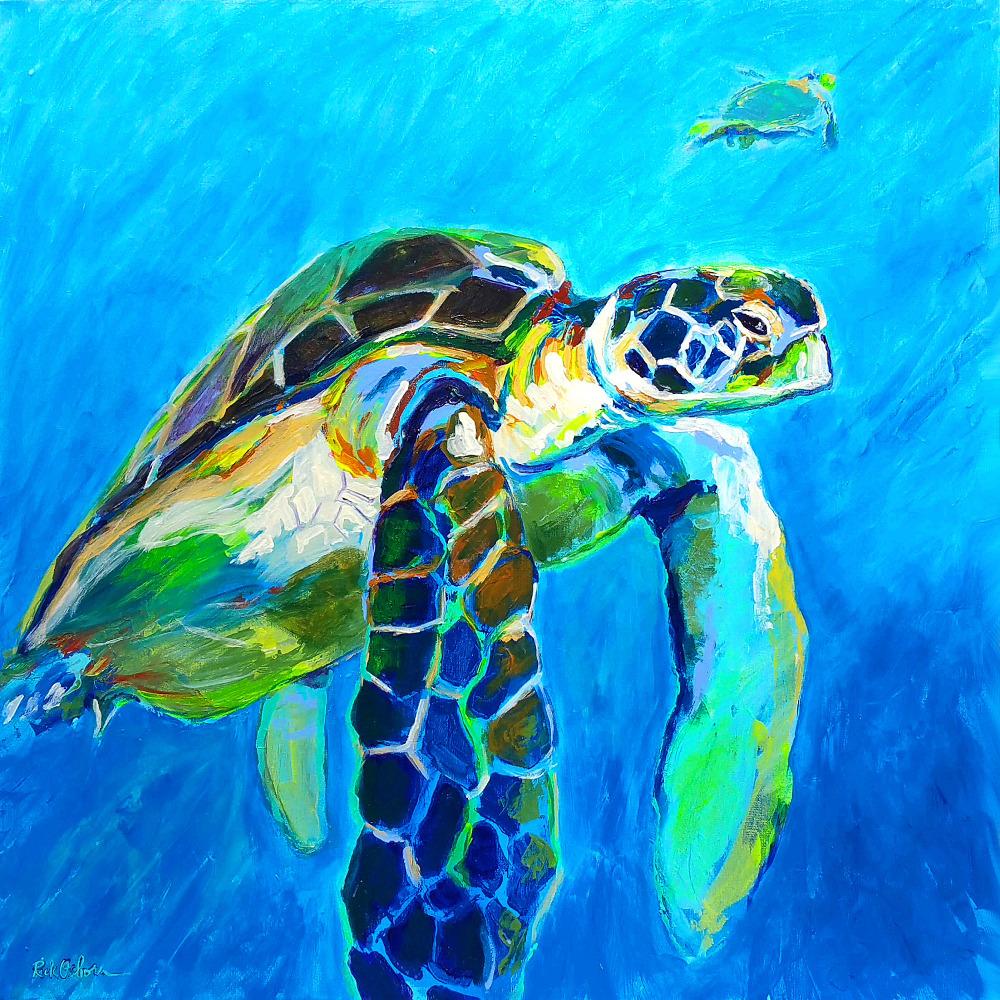sea-turtle-rick-osborn-sm-zemugy