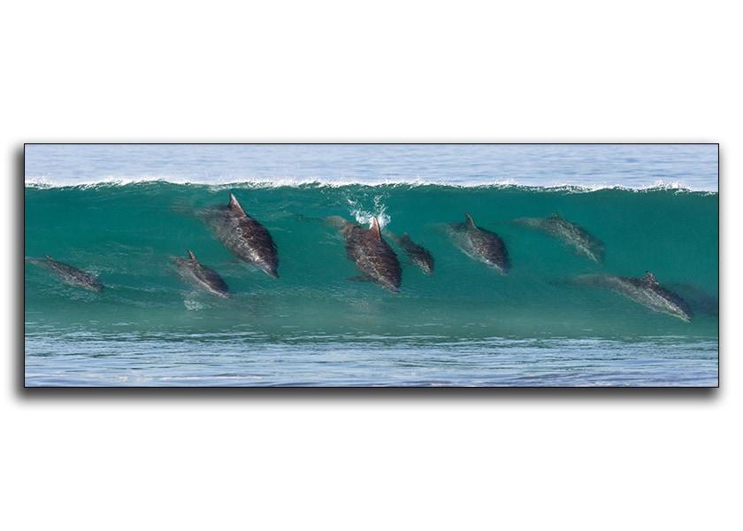 Family-Surf-Lesson--Metal-n8xz0u