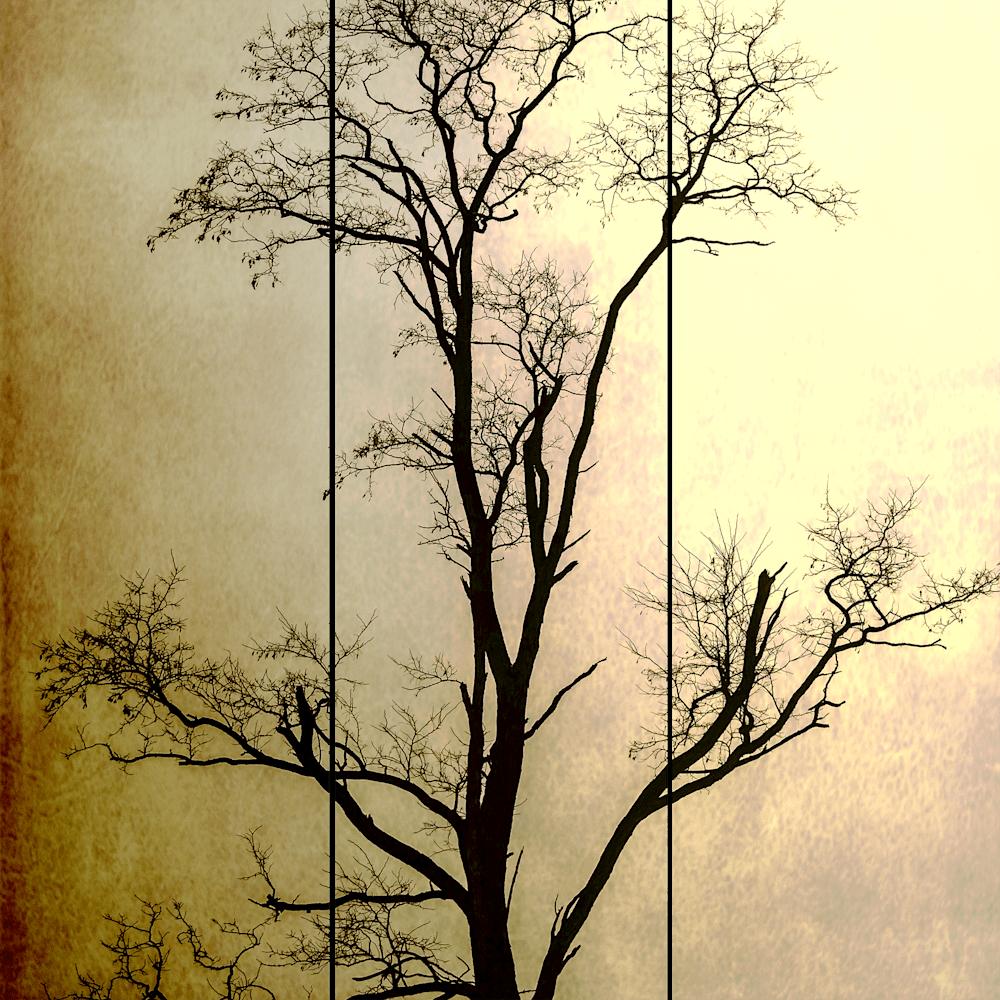 Arbor-Trytych-One-Master-copy-k4xssd