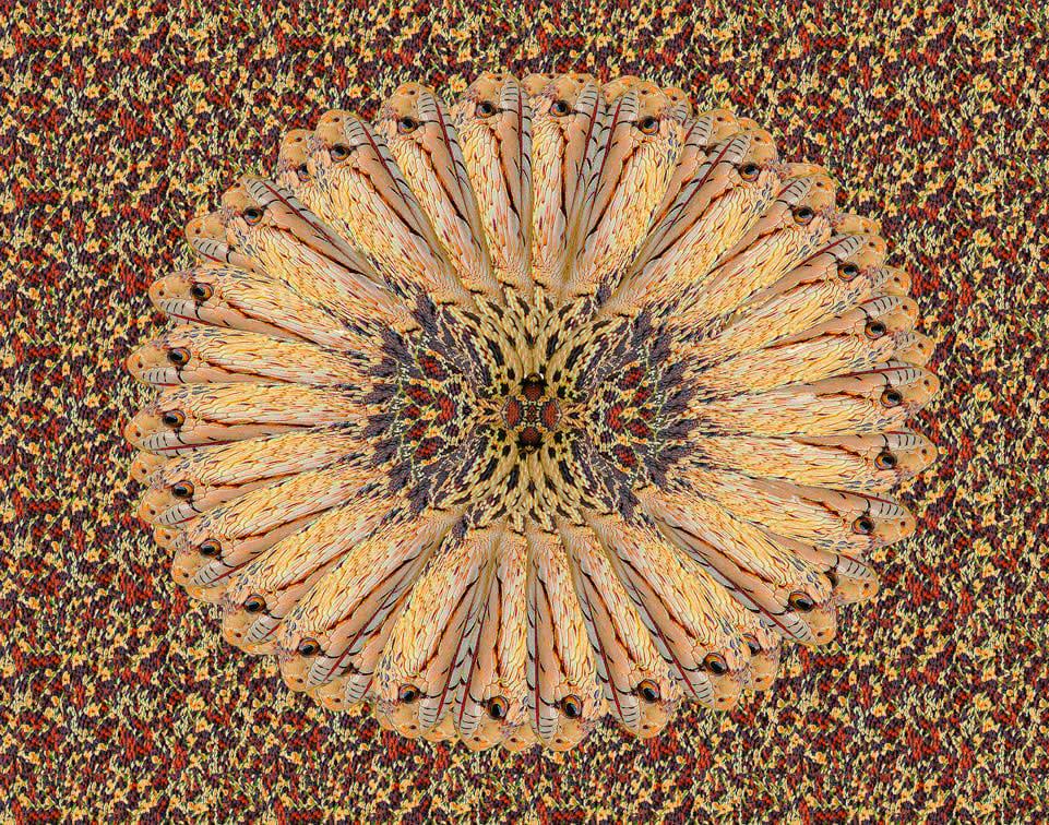 Inca-Headdress-03-dq6hav